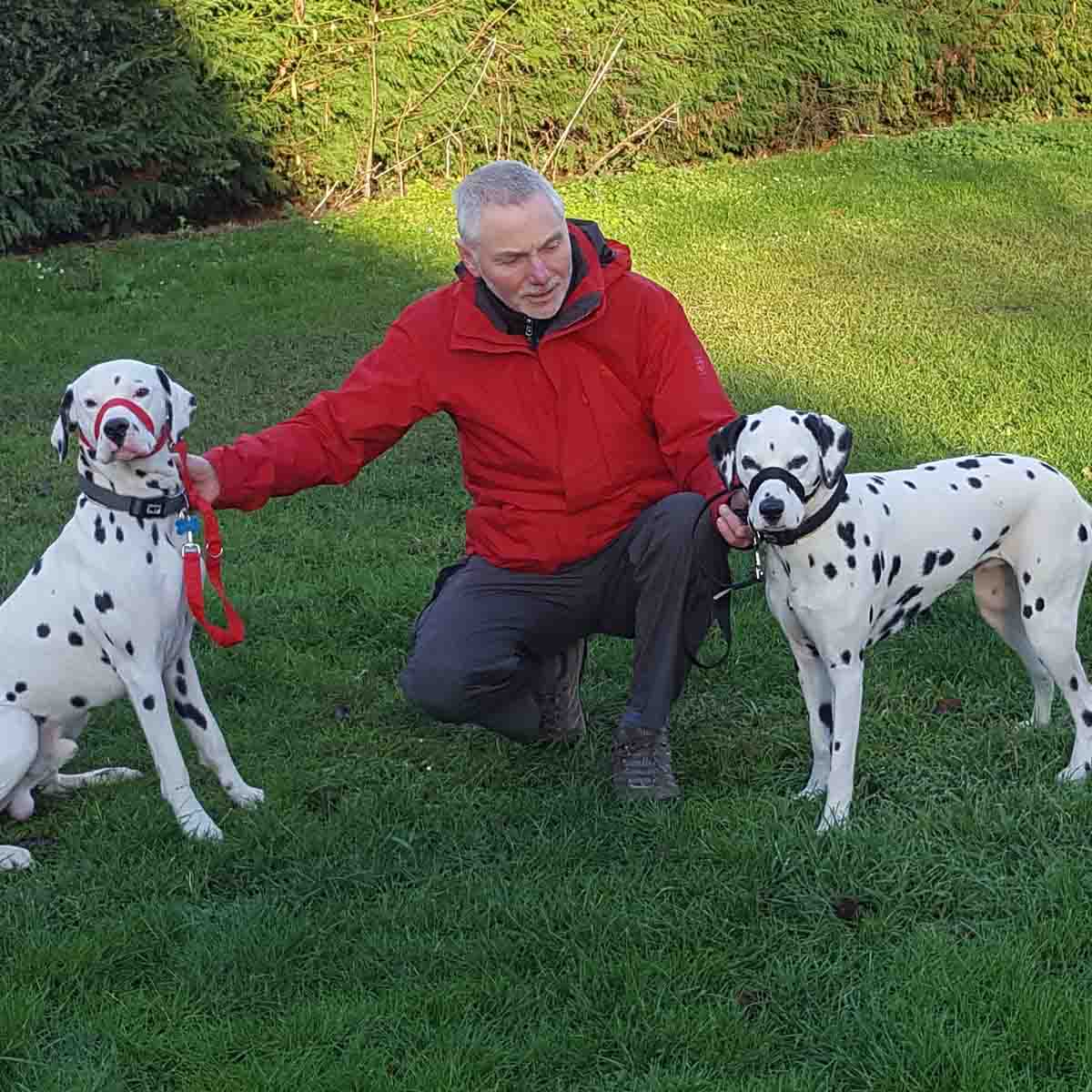 Mort Smith training dogs in Shrewsbury