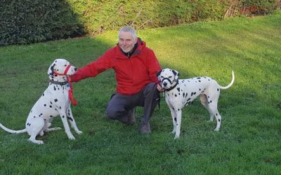 Meet the Shrewsbury Dog Trainer…