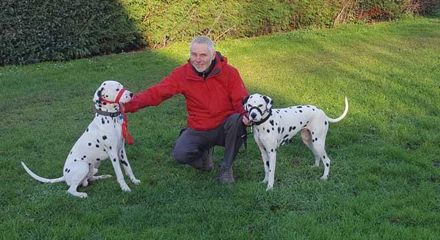 Dog behavioural training in Shrewsbury